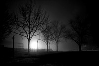 One Foggy Night